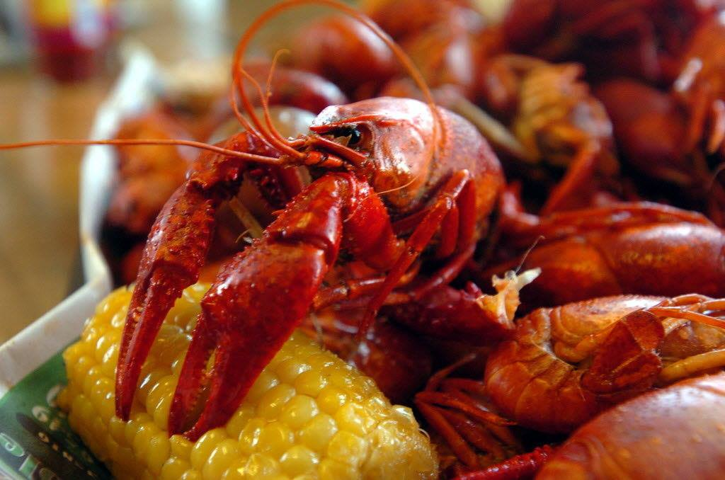 Fat tuesday crawfish boil at rex 39 s seafood at the dallas for Tp fish market