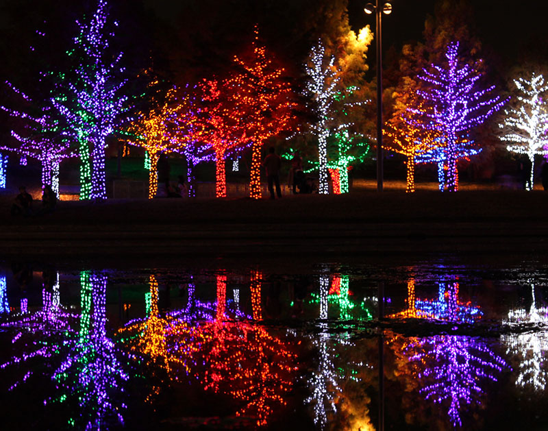 - The Best Christmas Lights Displays Around Dallas. Central Track